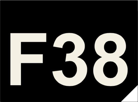 Logo Forever 38