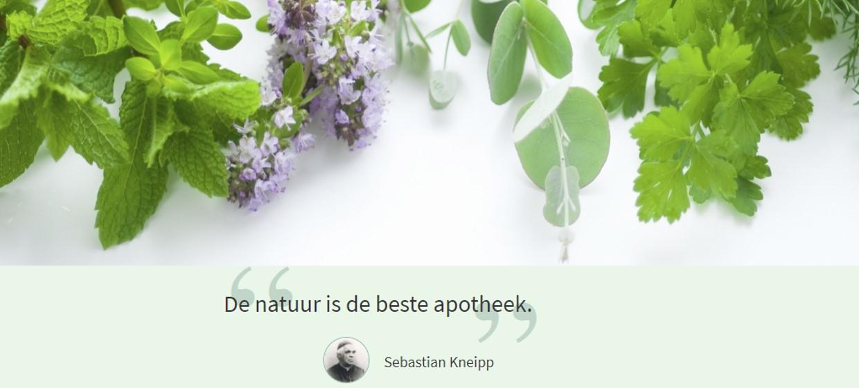 kneipp2